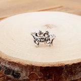 Ring van zilver Gekko_