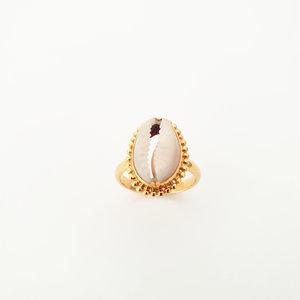 Ring met schelp